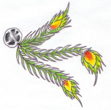 3 feather green tattoo