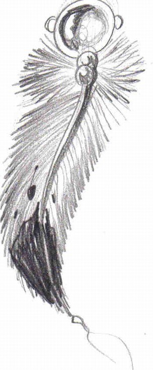 Feather Tattoo Ideas and Meaning