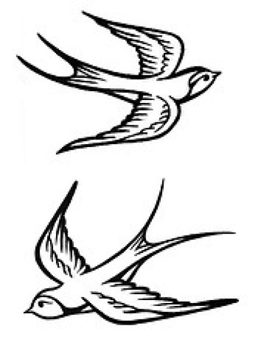 pair of Swallows for Tattoo