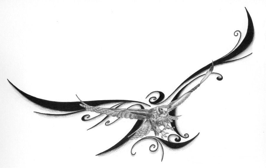 Falcon Bird Tattoo Meaning
