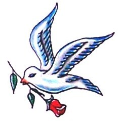 Dove with rose