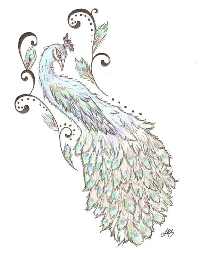 Peacock Tatoo Ideas