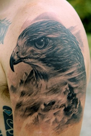 hawk head tat on mans shoulder
