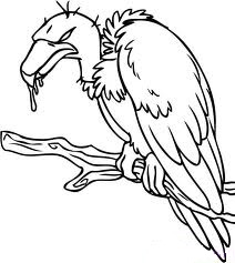 Vulture Tatoo Ideas