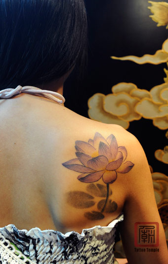 Lotus tattoo meaning ideas images pictures for Lotus flower tattoo on shoulder