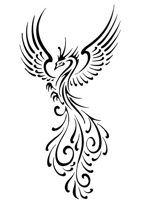 Phoenix Tattoo Meaning Ideas Fire Bird