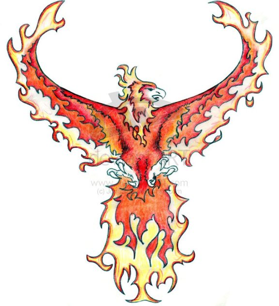 phoenix bird of flames