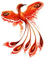 bird of fire